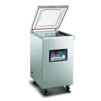 Аппарат упаковочный вакуумный IVP-460/2G с опцией газонаполнения