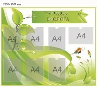 Стенд для кабинета биологии-006